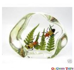 Real Beetles & Leaves Insect Desk Ornament Resin