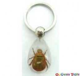 Real Golden Chafer Beetle Insect Resin Keyring